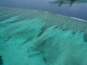 機内からの海